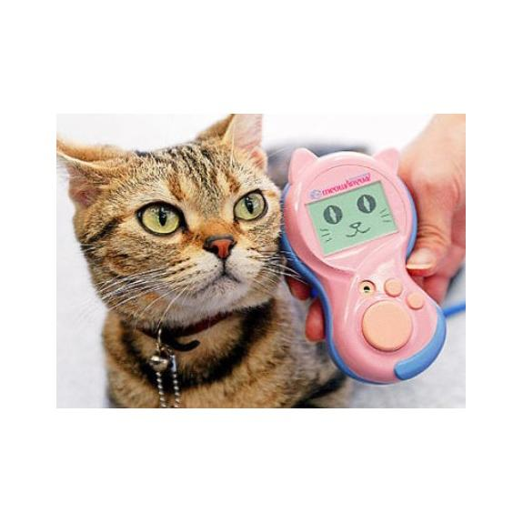 Tech for your pets