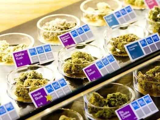 In Pictures: High tech for high times. What it takes to run a medical marijuana business