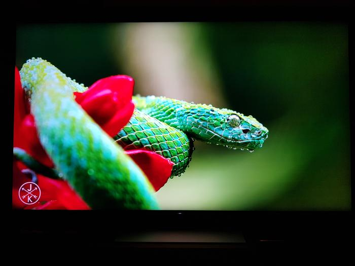 The Costa Rica 4K 60fps show reel on YouTube always looks amazing. But at this level we expect colours to pop.