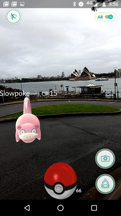 A wild Slowpoke appeared. In fact, there are quite a few water Pokemon down by the Harbour.