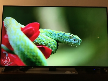 ​Panasonic TH-65DX900U 4K smart TV
